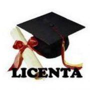 logo Licenta