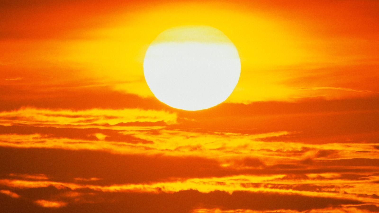 ziua Soarelui