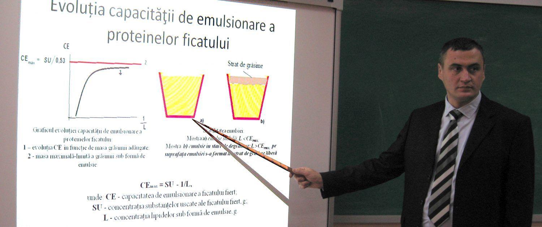 Doctorat FTMIA_VGornet_2
