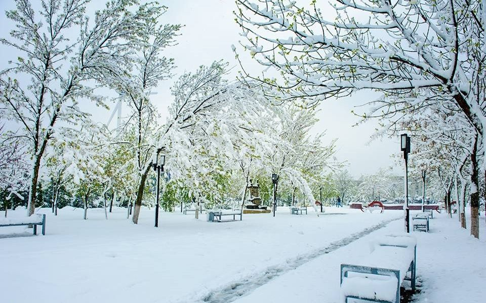 Parcul UTM in Prier 2017_19
