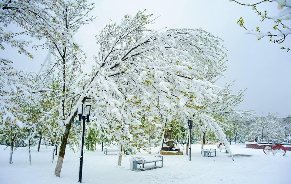 Parcul UTM in Prier 2017_20
