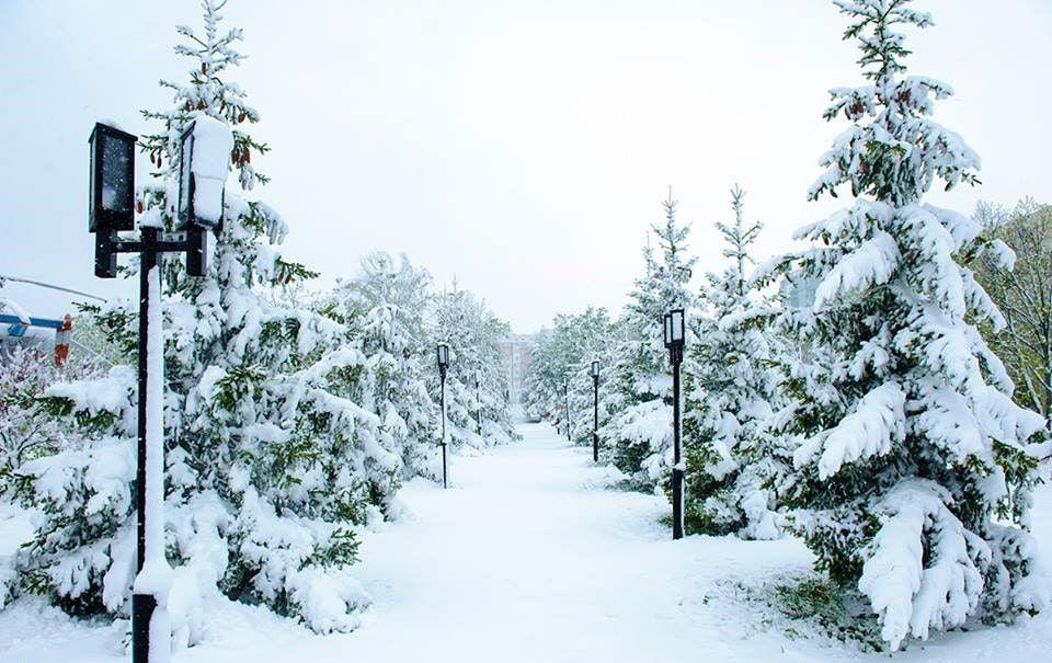 Parcul UTM in Prier 2017_9