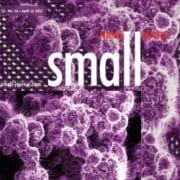 SMALL_r