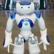 Robotul Frank_r_result