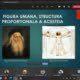 Lucrările lui Vitruviu și Leonardo da Vinci – opere de căpătâi pentru studenții FTP